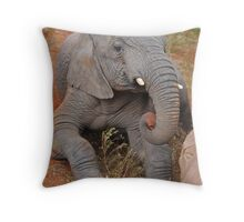 Elephant's Time Out  Throw Pillow