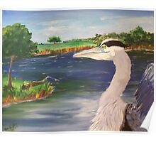 Blue Heron on Lake Poster
