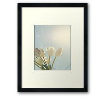 Tulips And Blue Sky Framed Print
