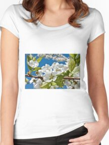 Plum Tree Blossoms Women's Fitted Scoop T-Shirt