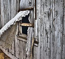 Window Treatment by photosbyflood