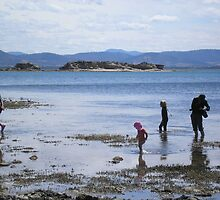 Red Ochre Beach Dodges Ferry Tasmania by Steve Page
