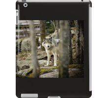 Timber Wolf Between the Trees iPad Case/Skin