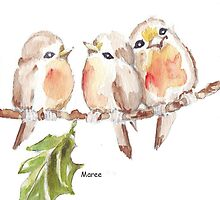 Three Little birds ♪♪♪♫ by Maree  Clarkson