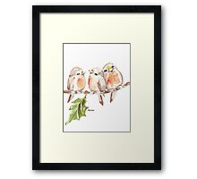 Three Little birds ♪♪♪♫ Framed Print