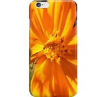 A Twist on Orange iPhone Case/Skin