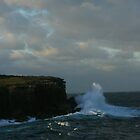 Crashing waves  Bowen Island Jervis Bay by danav