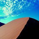 dune 45 by Tamara Cornell