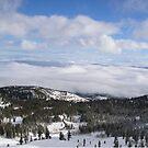 Fog Blanket by Jon  Johnson