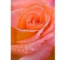 Peach delight Photographic Print