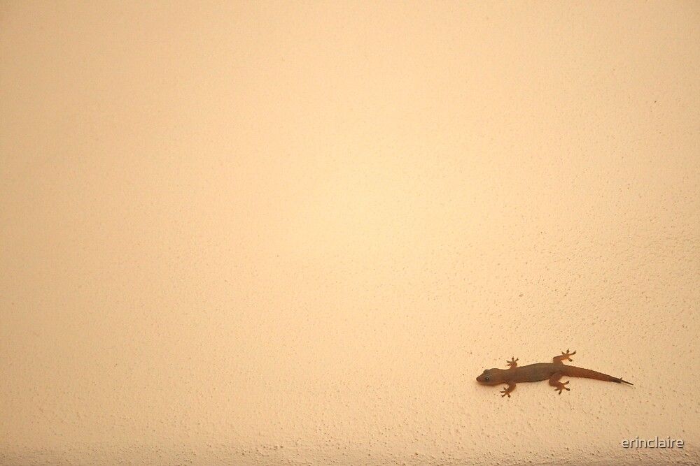Gecko by Erin Lyall