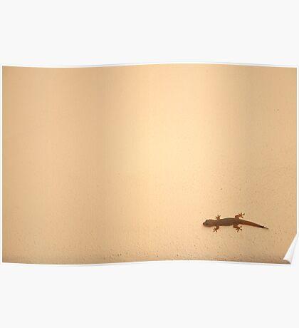 Gecko Poster