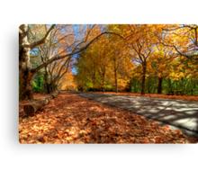 Mount Wilson The Glorious Colours of Autumn NSW Australia Canvas Print