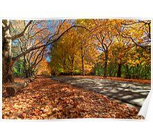 Mount Wilson The Glorious Colours of Autumn NSW Australia Poster