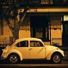 Beetle by Dan Coates