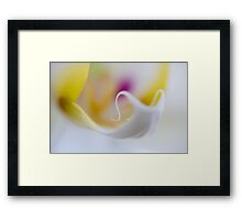 Orchid's Tongue Framed Print