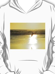 Flying By Sunset T-Shirt