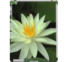 Yellow Water Lily iPad Case/Skin