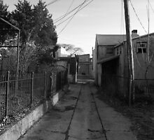 The back streets by Lisa Brower