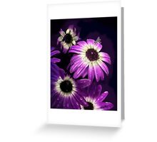 Purple Petals with Bee Greeting Card
