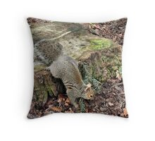 Where have all the forests gone...long time passing... Throw Pillow