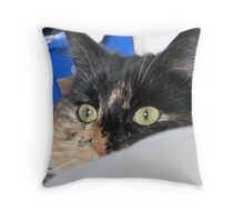 Lilys Lair Throw Pillow