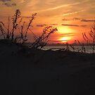 Sunset Jamacia Bay NY by Jacker