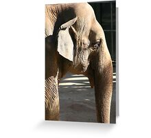 A wrinkle in time... Greeting Card