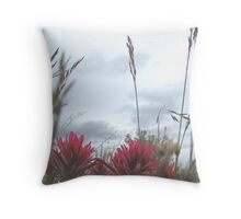 indian paint brush #3 Throw Pillow