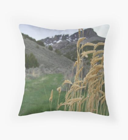 last signs of winter Throw Pillow