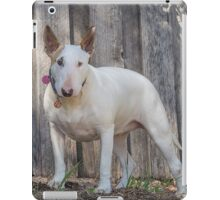 Bully iPad Case/Skin