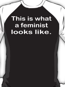 This is what a feminist looks like funny geek nerd T-Shirt