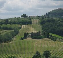 ROLLING HILLS OF TUSCANY by kazaroodie