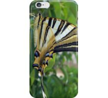 Swallowtail With Partially Closed Wings Side View iPhone Case/Skin