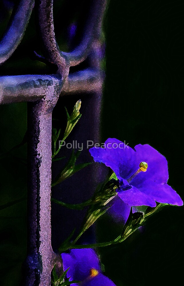 The Color Purple by Polly Peacock