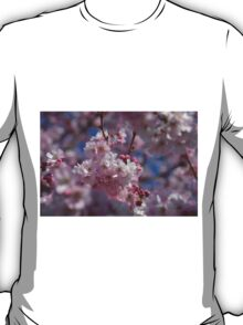 Blooming cherry tree in Spring T-Shirt