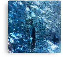 Abstract blue scales 3 Canvas Print
