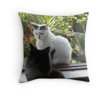 Just a Bunch of Cats Throw Pillow