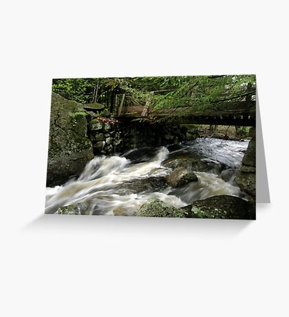 Water Under The Bridge Greeting Card