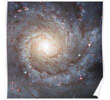 Spiral Galaxy Messier 74 Poster