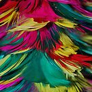 Feather Duster by Karen Martin