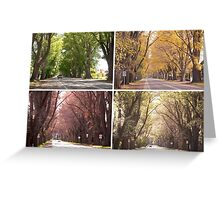Seasons of The Avenue - Bacchus Marsh Greeting Card
