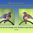 Changing Direction by Bonnie T.  Barry