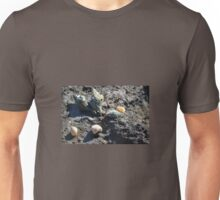 SHELLY BEACH Unisex T-Shirt