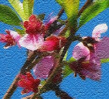 Peach Blossom in Watercolor by Jan  Tribe