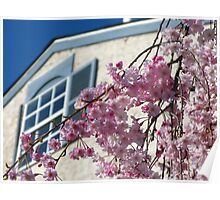 Just Lovely Spring Day Poster