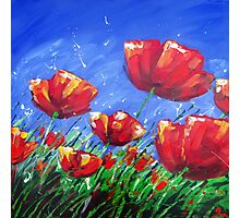 Summer Poppies Photographic Print