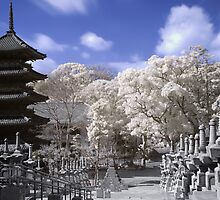 Pagoda Dreams (IR) by Yevgen Pogoryelov