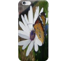 White Daisy and Butterfly iPhone Case/Skin