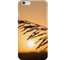 Beautiful sunset iPhone Case/Skin